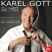 Karel Gott vs. DJ Neo Remixes (EP) de Karel Gott