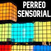Perreo Sensorial Vol. 5 de Various Artists