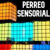 Perreo Sensorial Vol. 3 de Various Artists