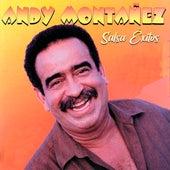 Salsa Éxitos de Andy Montañez