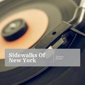 Sidewalks Of New York de Various Artists