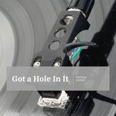 Got a Hole In It von Various Artists