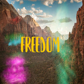 Freedom by pete.