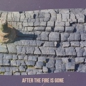 After The Fire Is Gone von Various Artists