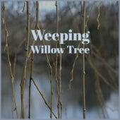 Weeping Willow Tree de Various Artists