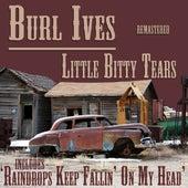 Little Bitty Tears by Burl Ives