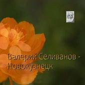 Новокузнецк by Валерий Селиванов