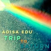 Trip to Saturn by Adisa Edu