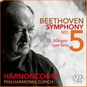 Symphony No. 5: I. Allegro con brio de Nikolaus Harnoncourt