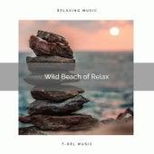 ! ! ! ! ! ! ! ! ! ! Wild Beach of Relax de Ocean Waves For Sleep (1)