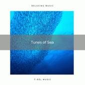 ! ! ! ! ! ! ! ! ! ! Tunes of Sea de Ocean Waves For Sleep (1)