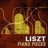 Lizst Piano Pieces de Various Artists