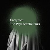 Evergreen by The Psychedelic Furs
