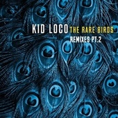 The Rare Birds Remixes, Pt. 2 by Kid Loco