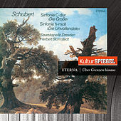 Schubert: Symphonies No. 8 & 9 (KulturSpiegel - Eterna - Über Grenzen hinaus) by Various Artists