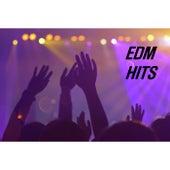 EDM Hits fra Various Artists