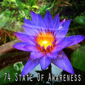 74 State of Awareness by Zen Meditate
