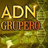 ADN - Grupero de Various Artists