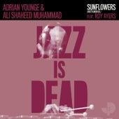 Sunflowers (Instrumental) de Adrian Younge