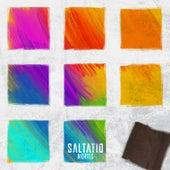 Besorgter Bürger / Schrei nach Liebe (Live) von Saltatio Mortis