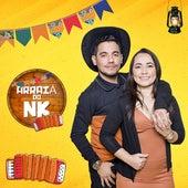 Arraiá do Nk (Live Session) von NK Somos Sons