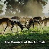 The Carnival of the Animals von Exam Study Classical Music Orchestra