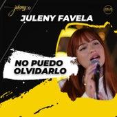 No Puedo Olvidarlo by Juleny Favela
