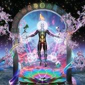 Rainbow Brain by GRiZ