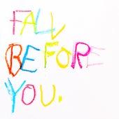 Fall Before You de Dan Owen