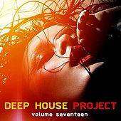 Deep House Project, Vol. 17 de Various Artists
