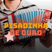 Pisadinha de Ouro von Various Artists