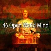 46 Open World Mind by Lullabies for Deep Meditation
