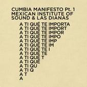A Ti Que Te Importa (Cumbia Manifesto Pt. 1) von Mexican Institute of Sound