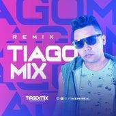 XAND AVIÃO E TARCÍSIO DO ACORDEON - ROLÊ [ Remix Tiago Mix ] de Tiago Mix
