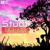 Study Radio: Soft Japanese LoFi Playlist to Study/Chill/Sleep by Buffalo Chilled Milk