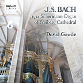 J.S. Bach: The Organ of Freiberg Cathedral, Germany by David Goode