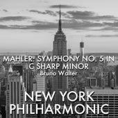 Mahler: Symphony No. 5 in C Sharp Minor fra Bruno Walter