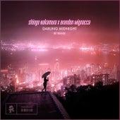 Darling Midnight (BT Remix) by Shingo Nakamura