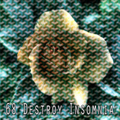 68 Destroy Insomnia by Calming Sounds