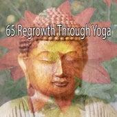 65 Regrowth Through Yoga de Yoga