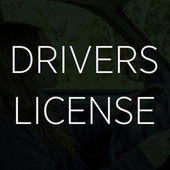 Drivers License by Chloe Edgecombe