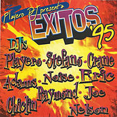 Playero DJ Presenta Exitos '95 / 17th Anniversary  (Underground Reggaeton Edition) von Various Artists