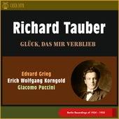 Glück, Das Mir Verblieb (Berlin Recordings of 1924 - 1925) von Richard Tauber