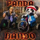 La Canción de Nando & Panda de Yolo Aventuras