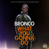 What You Gonna Do by Bronco
