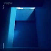 Alive (Remixes) by RÜFÜS DU SOL