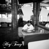 Hey Tony by Tony Seltzer