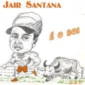 É o Boi van jair Santana