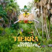 Tierra by Bomba Estereo