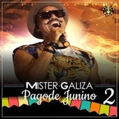 Pagode Junino (Cover Ao Vivo) von Mr. Galiza